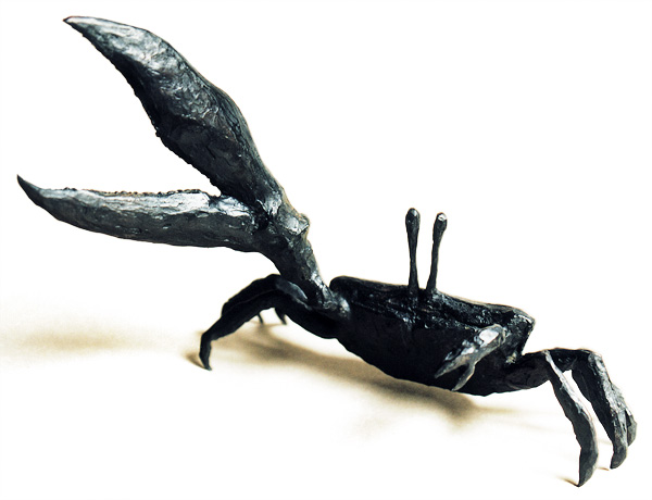 crabe-violoniste-ouvert