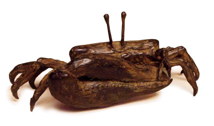 crabvioloniste-repos